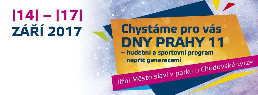 Banner DnyP11 2017